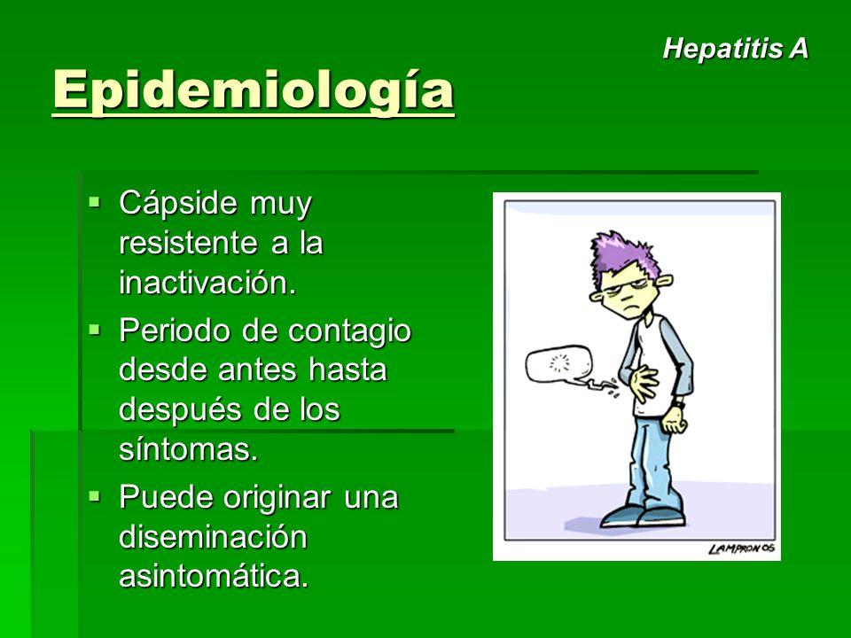 Epidemiología Cápside muy resistente a la inactivación. Cápside muy resistente a la inactivación. Periodo de contagio desde antes hasta después de los