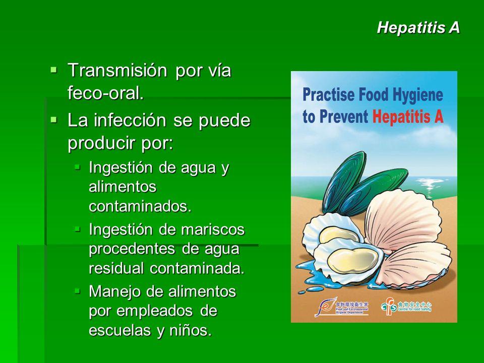 Transmisión por vía feco-oral. Transmisión por vía feco-oral. La infección se puede producir por: La infección se puede producir por: Ingestión de agu