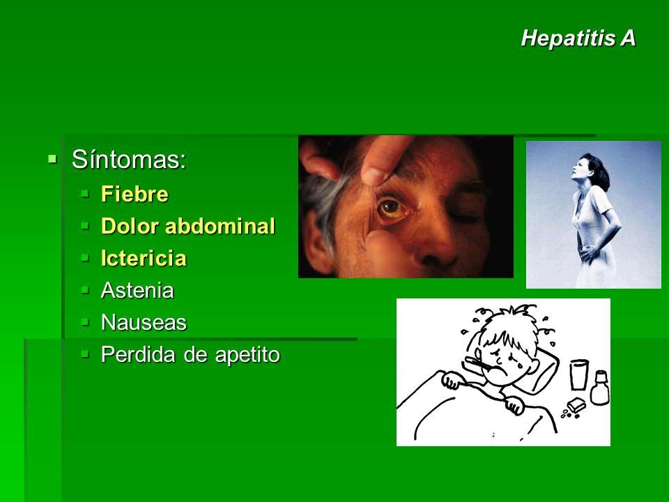Síntomas: Síntomas: Fiebre Fiebre Dolor abdominal Dolor abdominal Ictericia Ictericia Astenia Astenia Nauseas Nauseas Perdida de apetito Perdida de ap