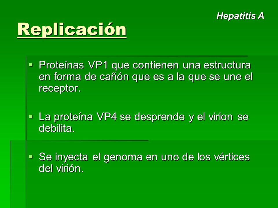 Replicación Proteínas VP1 que contienen una estructura en forma de cañón que es a la que se une el receptor. Proteínas VP1 que contienen una estructur