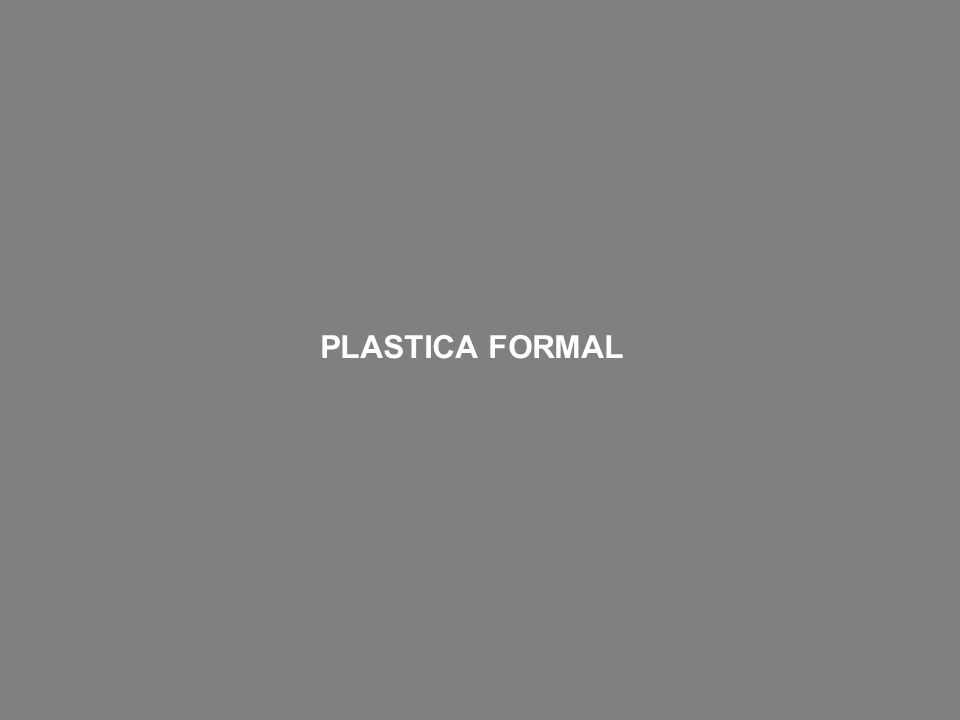 PLASTICA FORMAL