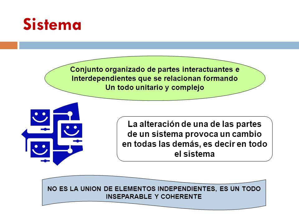 Conjunto organizado de partes interactuantes e Interdependientes que se relacionan formando Un todo unitario y complejo La alteración de una de las pa