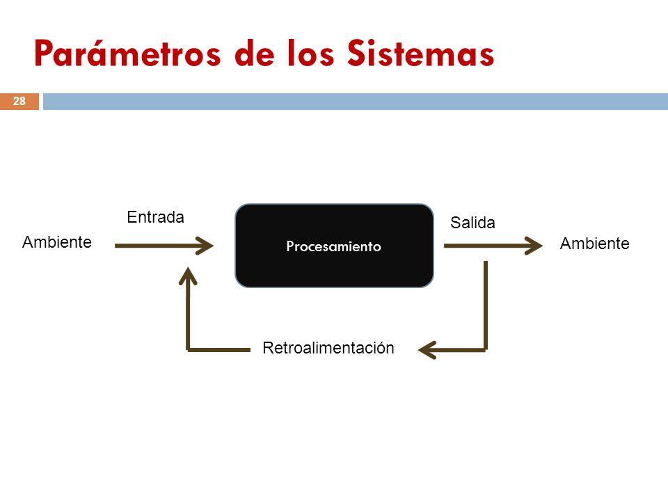 Procesamiento Ambiente Entrada Salida Retroalimentación 28 Parámetros de los Sistemas