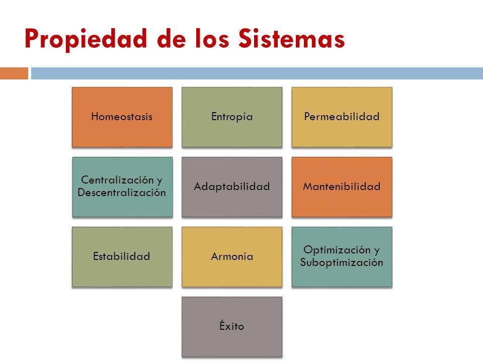 HomeostasisEntropíaPermeabilidad Centralización y Descentralización AdaptabilidadMantenibilidad EstabilidadArmonía Optimización y Suboptimización Éxit