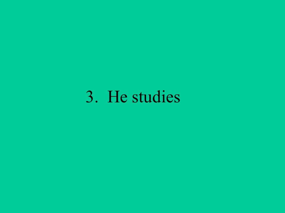 3. He studies