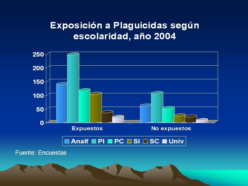 Uso de EPP por expuestos a plaguicidas año 2004 Fuente: Encuestas
