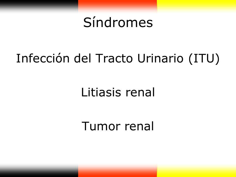 Síndromes Infección del Tracto Urinario (ITU) Litiasis renal Tumor renal