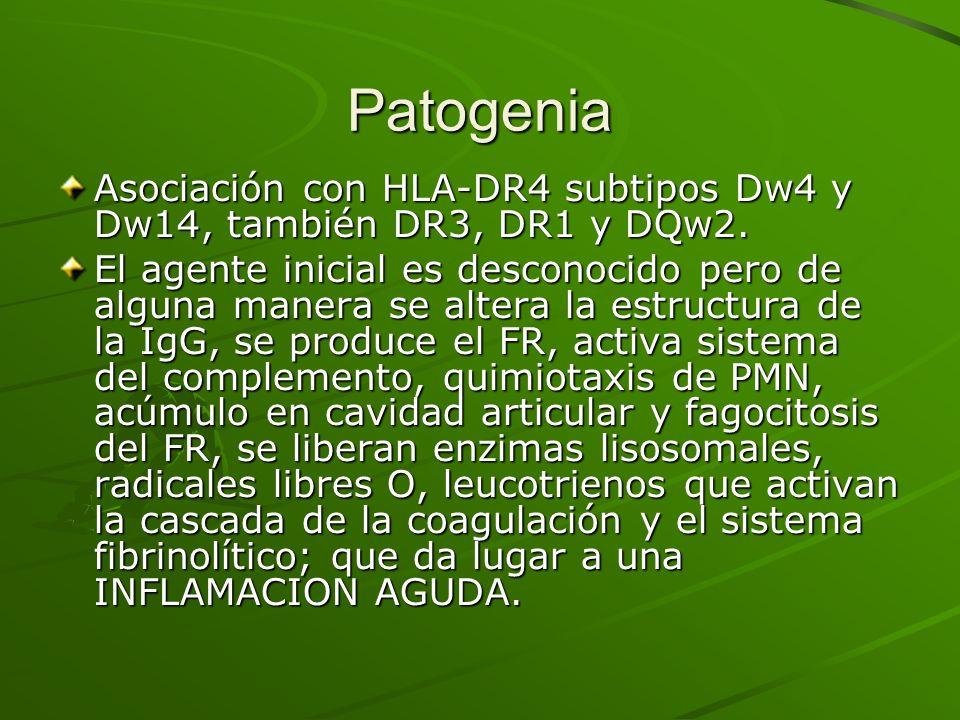 Patogenia Asociación con HLA-DR4 subtipos Dw4 y Dw14, también DR3, DR1 y DQw2. El agente inicial es desconocido pero de alguna manera se altera la est
