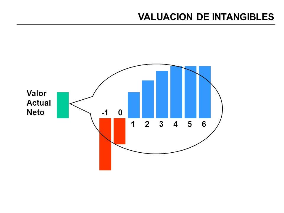 VALUACION DE INTANGIBLES 0 123456 Valor Actual Neto