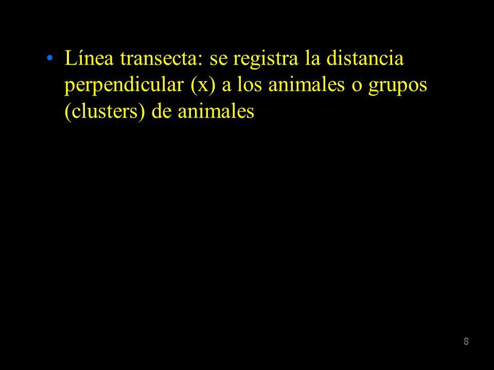 18 Tradicional D = n/2WL Distance P d = Proporción de animales detectados Entonces, D = n/2WLP d w Donde, P d = 0 g(x)dx W D = n.