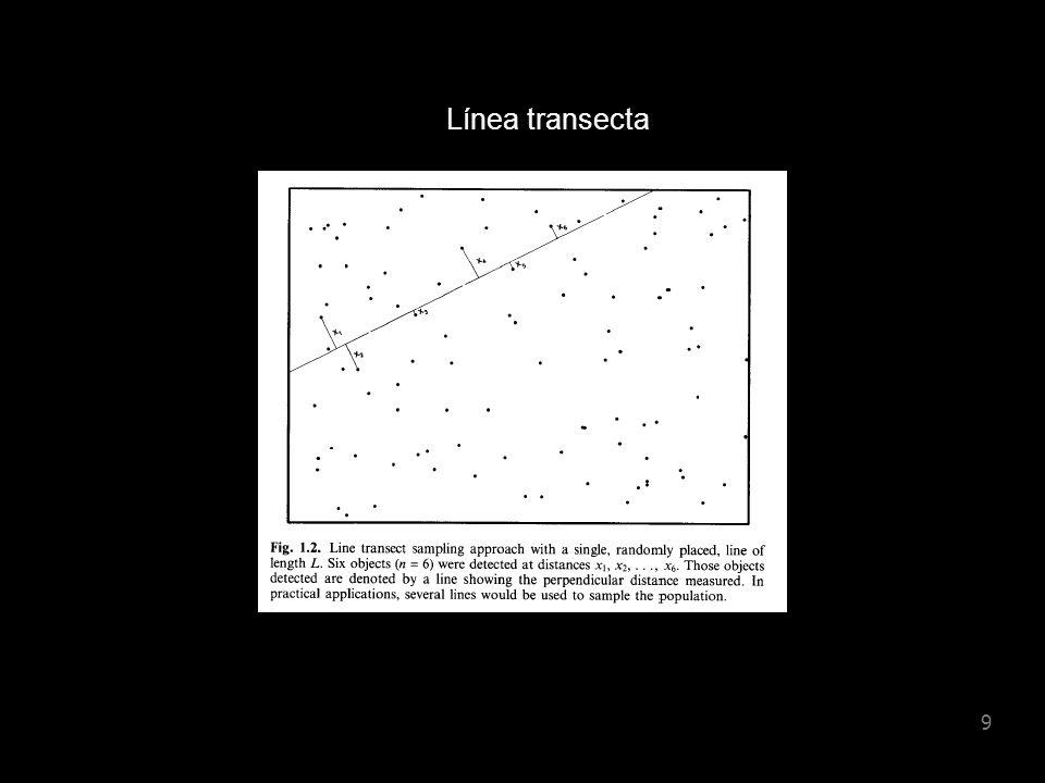 8 Línea transecta: se registra la distancia perpendicular (x) a los animales o grupos (clusters) de animales