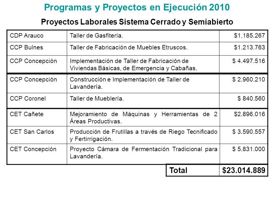 Programas y Proyectos en Ejecución 2010 Proyectos Laborales Sistema Cerrado y Semiabierto CDP AraucoTaller de Gasfitería.$1.185.267 CCP BulnesTaller d