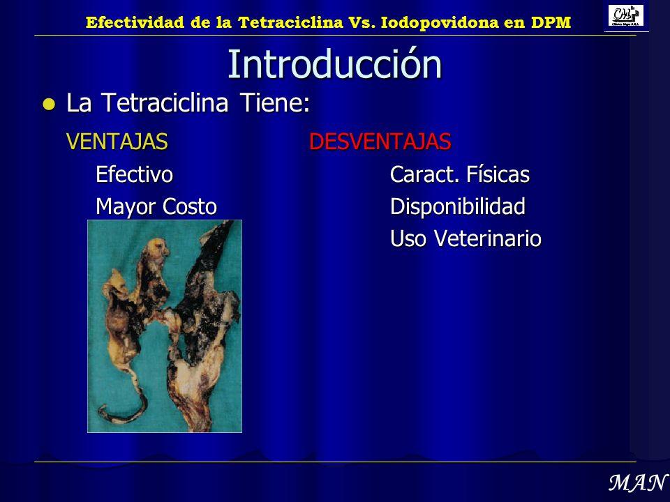 Introducción La Tetraciclina Tiene: La Tetraciclina Tiene: VENTAJASDESVENTAJAS Efectivo Caract. Físicas Mayor Costo Disponibilidad Uso Veterinario Uso