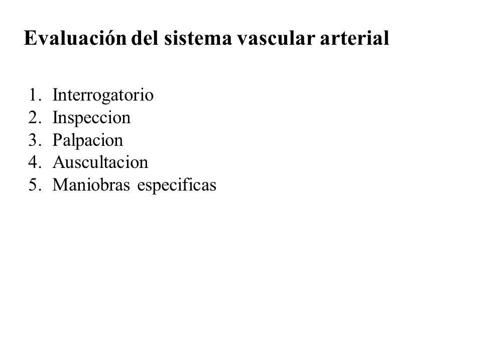 Evaluación del sistema vascular arterial 1.Interrogatorio 2.Inspeccion 3.Palpacion 4.Auscultacion 5.Maniobras especificas