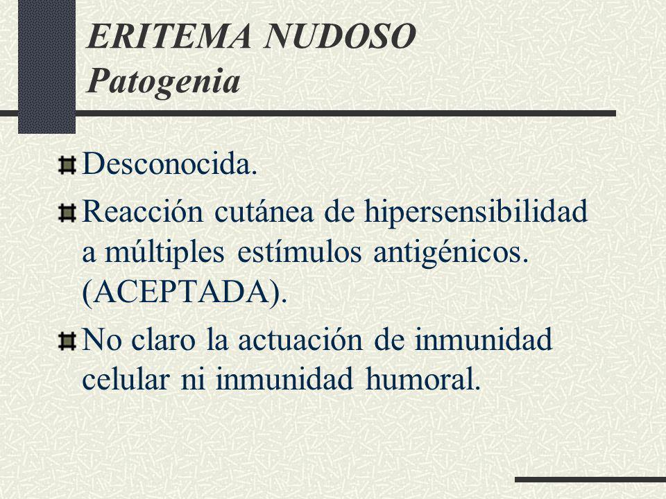 ERITEMA NUDOSO Patogenia Desconocida. Reacción cutánea de hipersensibilidad a múltiples estímulos antigénicos. (ACEPTADA). No claro la actuación de in