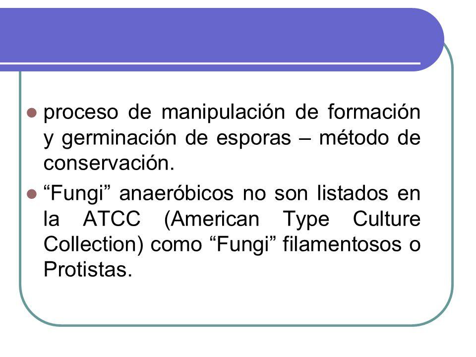 proceso de manipulación de formación y germinación de esporas – método de conservación. Fungi anaeróbicos no son listados en la ATCC (American Type Cu