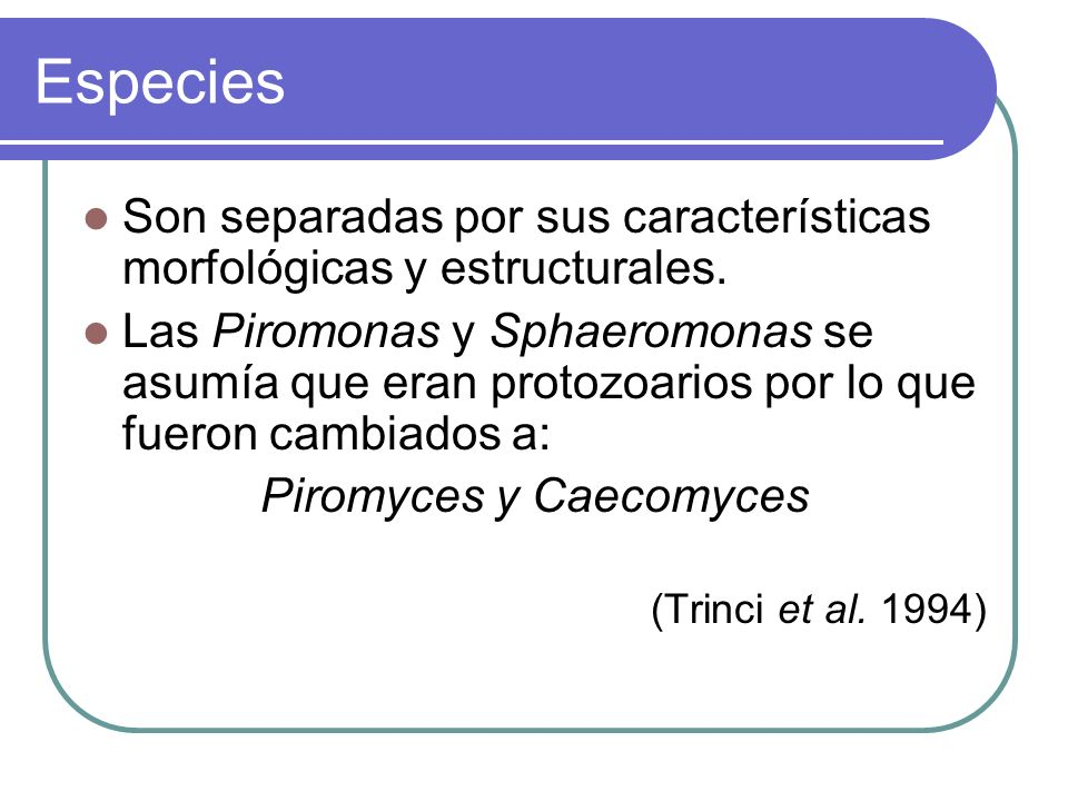 Especies Son separadas por sus características morfológicas y estructurales. Las Piromonas y Sphaeromonas se asumía que eran protozoarios por lo que f