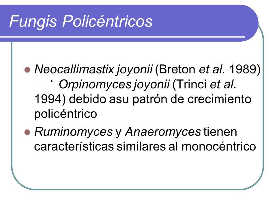 Fungis Policéntricos Neocallimastix joyonii (Breton et al. 1989) Orpinomyces joyonii (Trinci et al. 1994) debido asu patrón de crecimiento policéntric