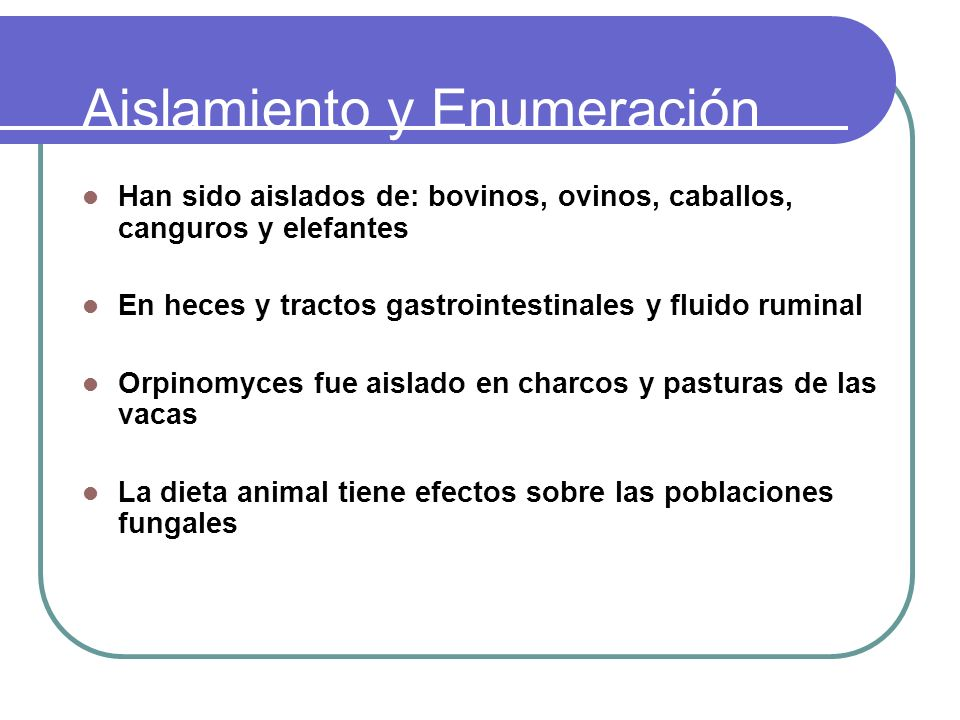 Aislamiento y Enumeración Han sido aislados de: bovinos, ovinos, caballos, canguros y elefantes En heces y tractos gastrointestinales y fluido ruminal