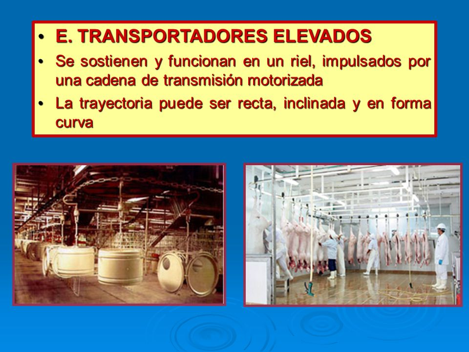 E. TRANSPORTADORES ELEVADOS E. TRANSPORTADORES ELEVADOS Se sostienen y funcionan en un riel, impulsados por una cadena de transmisión motorizada Se so