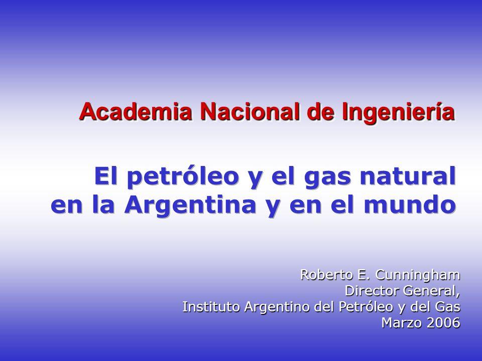 Academia Nacional de Ingeniería Roberto E. Cunningham Director General, Instituto Argentino del Petróleo y del Gas Marzo 2006 Marzo 2006