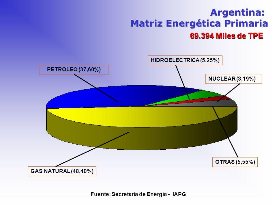 69.394 Miles de TPE PETROLEO (37,60%) Fuente: Secretaría de Energía - IAPG HIDROELECTRICA (5,25%) GAS NATURAL (48,40%) NUCLEAR (3,19%) OTRAS (5,55%)