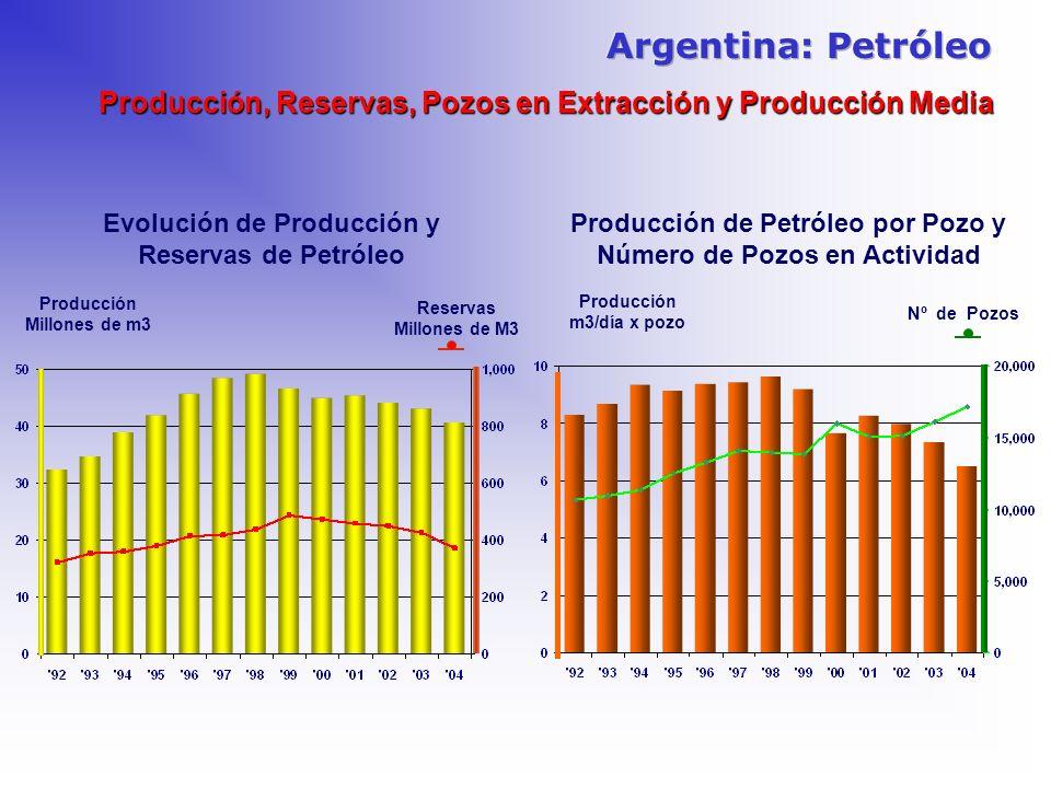 Producción Millones de m3 Nº de Pozos Producción m3/día x pozo Reservas Millones de M3 Evolución de Producción y Reservas de Petróleo Producción de Pe