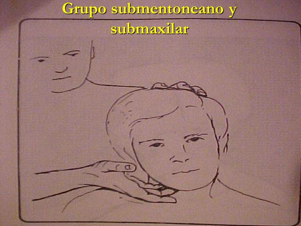 Grupo submentoneano y submaxilar