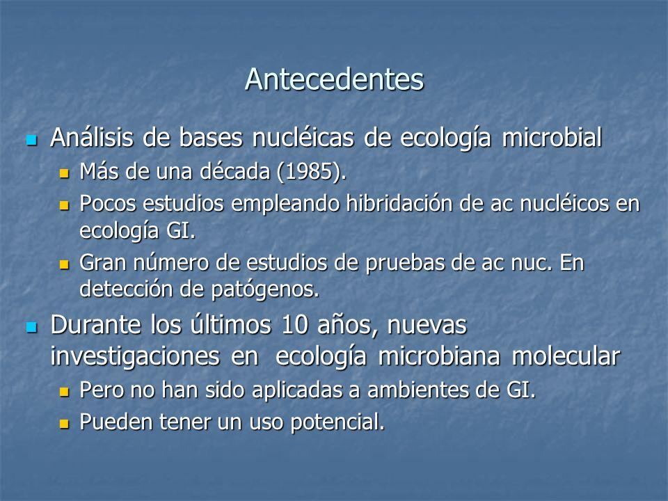Antecedentes Análisis de bases nucléicas de ecología microbial Análisis de bases nucléicas de ecología microbial Más de una década (1985). Más de una