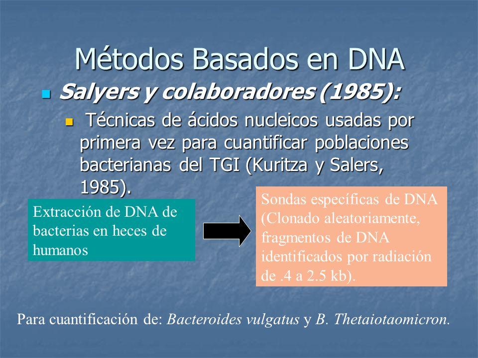 Métodos Basados en DNA Salyers y colaboradores (1985): Salyers y colaboradores (1985): Técnicas de ácidos nucleicos usadas por primera vez para cuanti