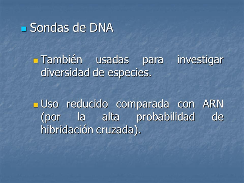 Sondas de DNA Sondas de DNA También usadas para investigar diversidad de especies. También usadas para investigar diversidad de especies. Uso reducido