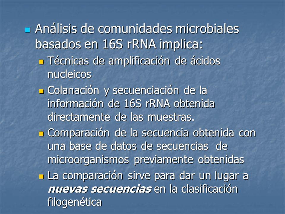 Análisis de comunidades microbiales basados en 16S rRNA implica: Análisis de comunidades microbiales basados en 16S rRNA implica: Técnicas de amplific