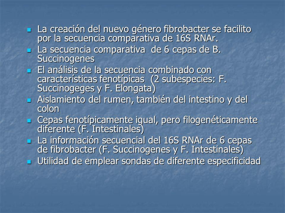 La creación del nuevo género fibrobacter se facilito por la secuencia comparativa de 16S RNAr. La creación del nuevo género fibrobacter se facilito po