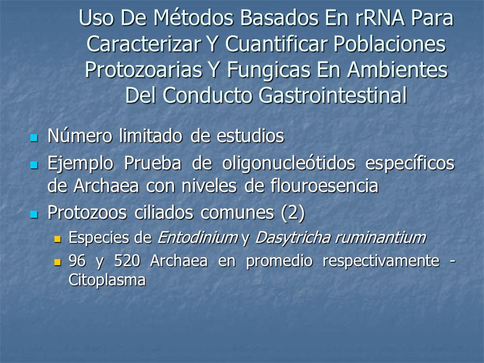 Uso De Métodos Basados En rRNA Para Caracterizar Y Cuantificar Poblaciones Protozoarias Y Fungicas En Ambientes Del Conducto Gastrointestinal Número l