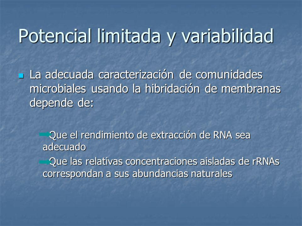 Potencial limitada y variabilidad La adecuada caracterización de comunidades microbiales usando la hibridación de membranas depende de: La adecuada ca