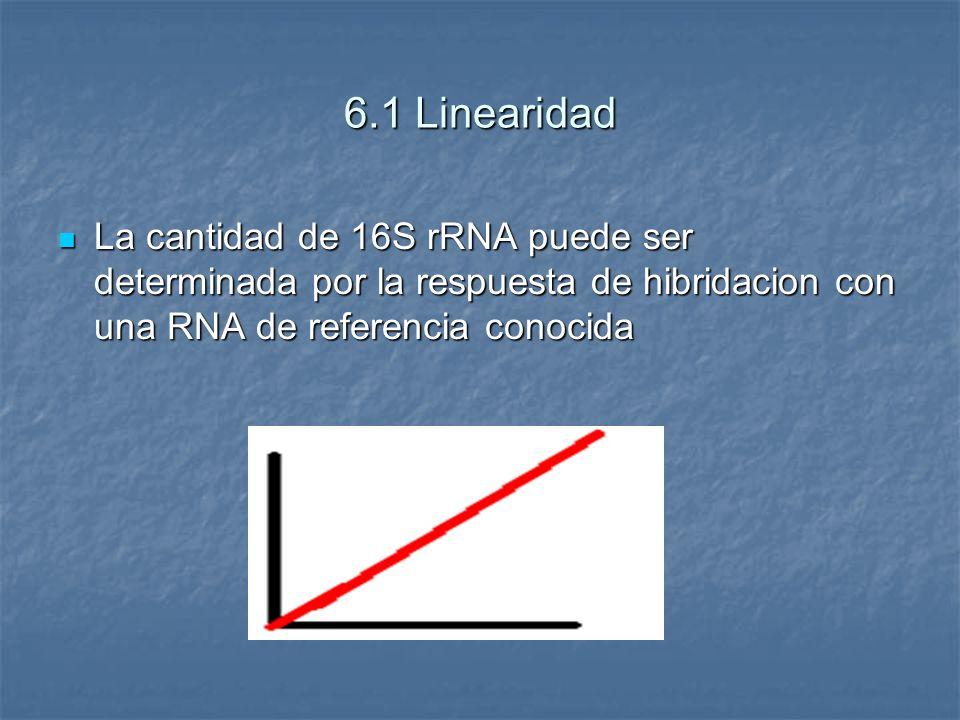 6.1 Linearidad La cantidad de 16S rRNA puede ser determinada por la respuesta de hibridacion con una RNA de referencia conocida La cantidad de 16S rRN