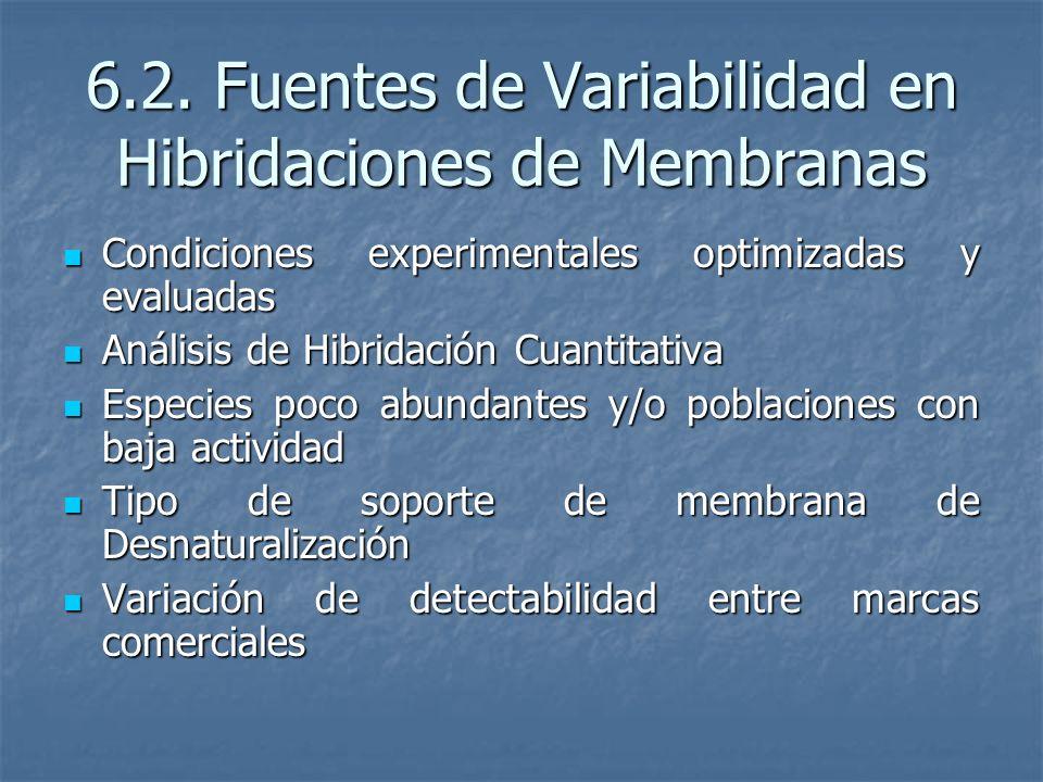 6.2. Fuentes de Variabilidad en Hibridaciones de Membranas Condiciones experimentales optimizadas y evaluadas Condiciones experimentales optimizadas y