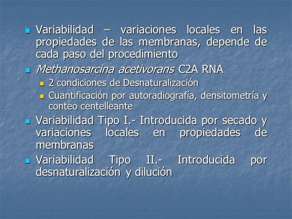 Variabilidad – variaciones locales en las propiedades de las membranas, depende de cada paso del procedimiento Variabilidad – variaciones locales en l