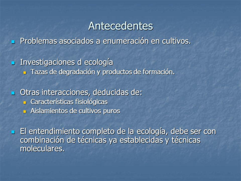 Antecedentes Problemas asociados a enumeración en cultivos. Problemas asociados a enumeración en cultivos. Investigaciones d ecología Investigaciones