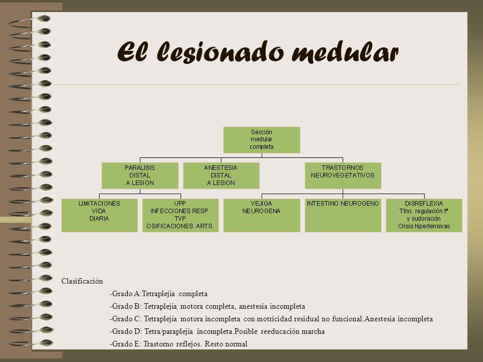 El lesionado medular Clasificación -Grado A:Tetraplejía completa -Grado B: Tetraplejía motora completa, anestesia incompleta -Grado C: Tetraplejía mot