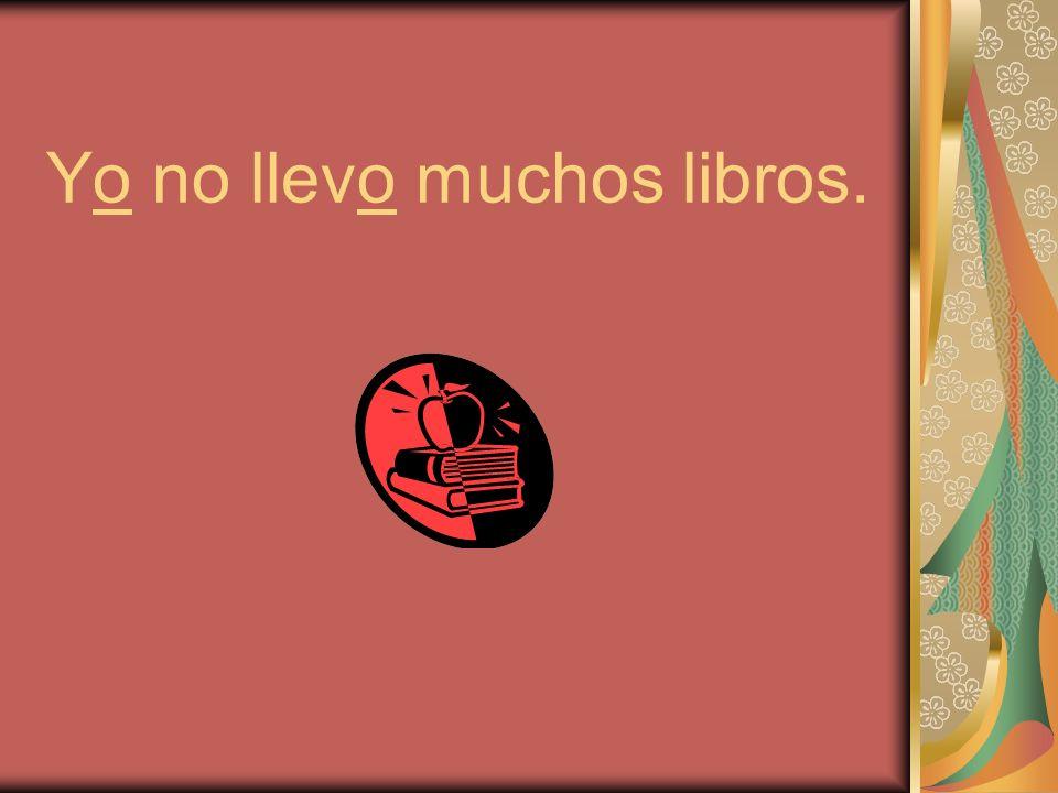 Yo no llevo muchos libros.