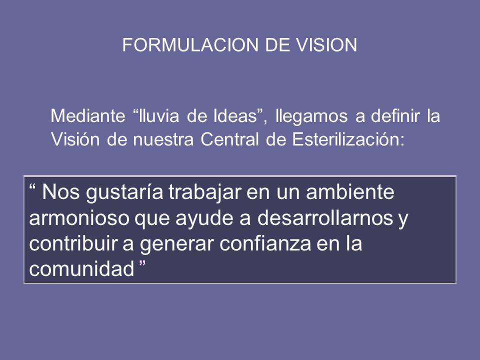 FORMULACION DE VISION Mediante lluvia de Ideas, llegamos a definir la Visión de nuestra Central de Esterilización: Nos gustaría trabajar en un ambient