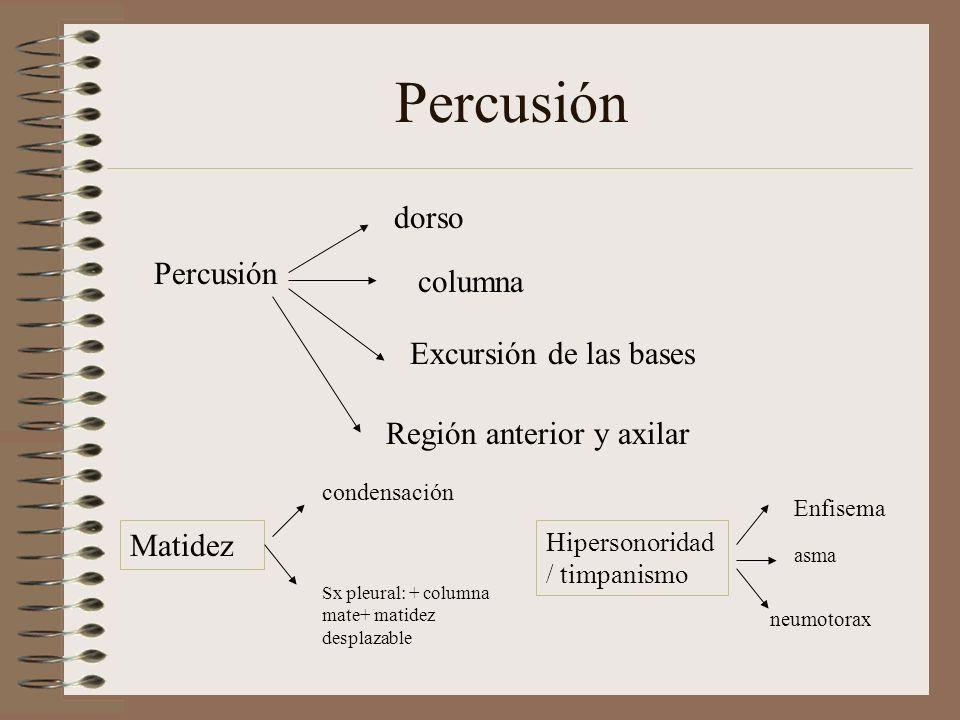 Percusión dorso columna Excursión de las bases Región anterior y axilar Matidez condensación Sx pleural: + columna mate+ matidez desplazable Hipersono