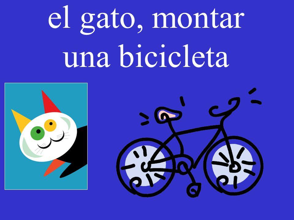 el gato, montar una bicicleta