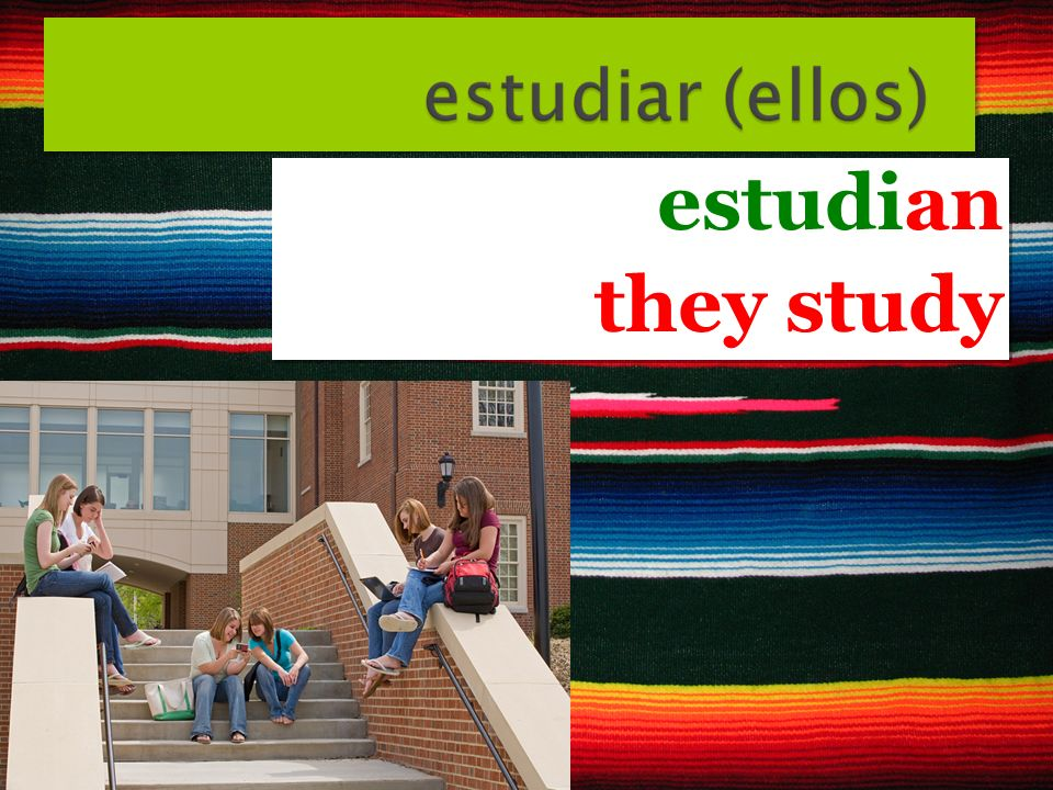 estudian they study estudian they study
