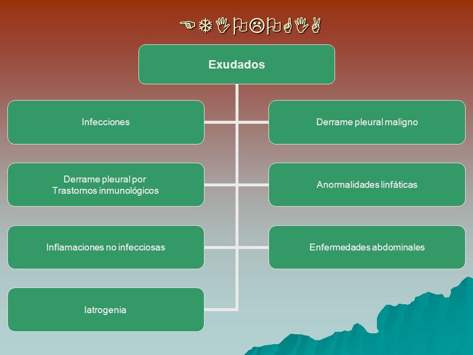 Exudados Infecciones Derrame pleural maligno Derrame pleural por Trastornos inmunológicos Anormalidades linfáticas Inflamaciones no infecciosas Enfermedades abdominales IatrogeniaETIOLOGIA