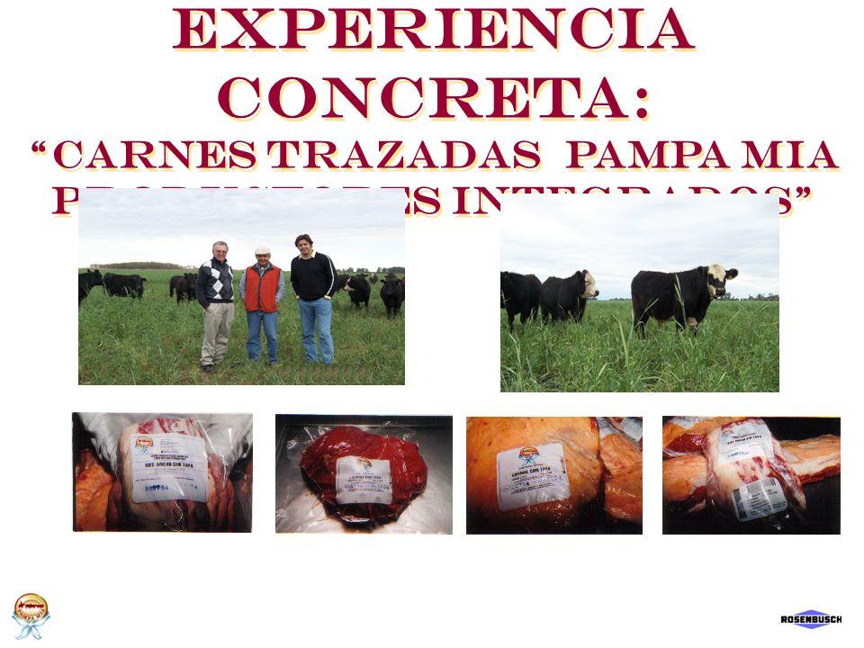 Experiencia Concreta: Carnes Trazadas Pampa Mia Productores Integrados Experiencia Concreta: Carnes Trazadas Pampa Mia Productores Integrados