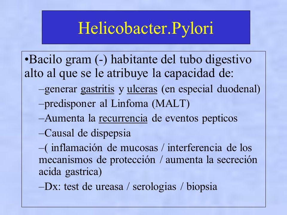 Helicobacter.Pylori Bacilo gram (-) habitante del tubo digestivo alto al que se le atribuye la capacidad de: –generar gastritis y ulceras (en especial duodenal) –predisponer al Linfoma (MALT) –Aumenta la recurrencia de eventos pepticos –Causal de dispepsia –( inflamación de mucosas / interferencia de los mecanismos de protección / aumenta la secreción acida gastrica) –Dx: test de ureasa / serologias / biopsia