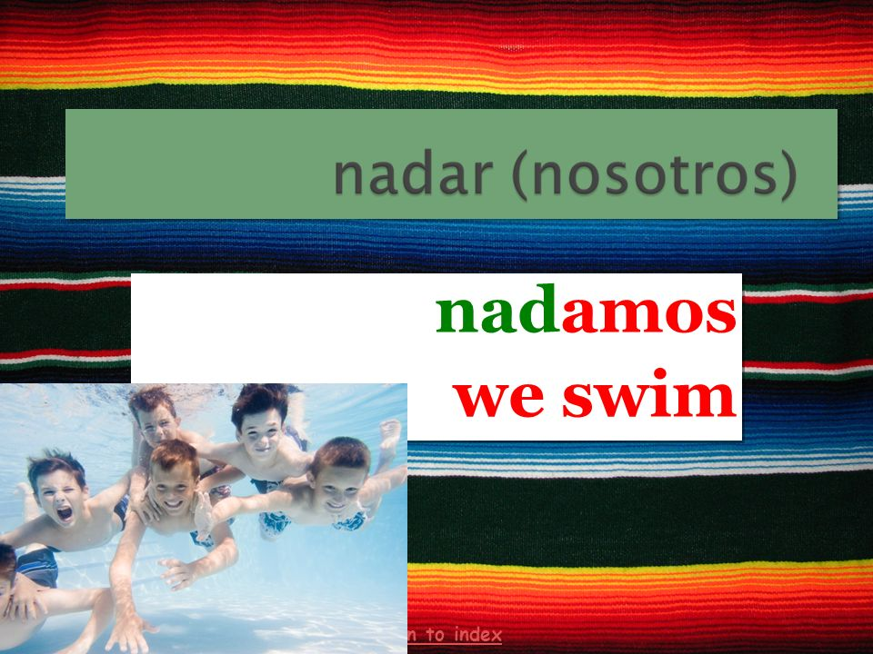 nadamos we swim nadamos we swim return to index