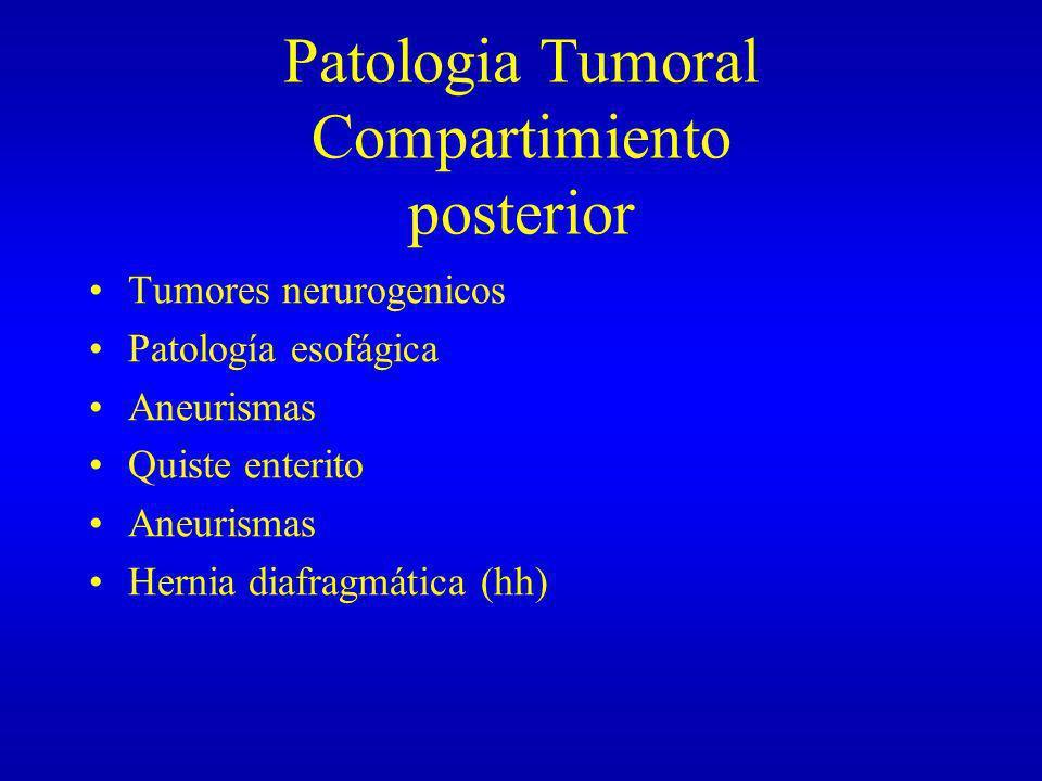 Patologia Tumoral Compartimiento posterior Tumores nerurogenicos Patología esofágica Aneurismas Quiste enterito Aneurismas Hernia diafragmática (hh)